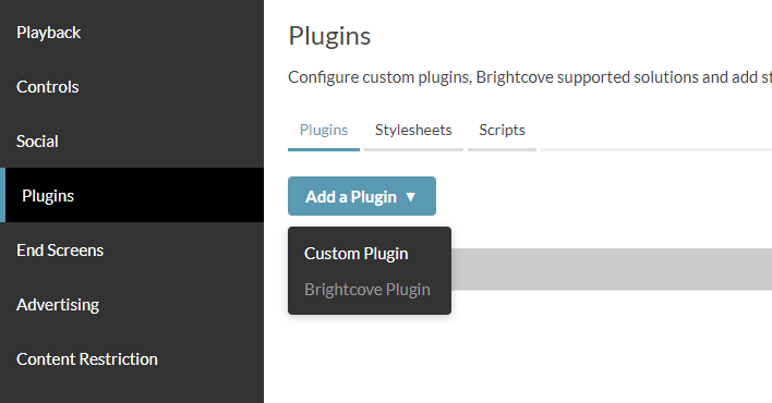 Brightcove custom plugin